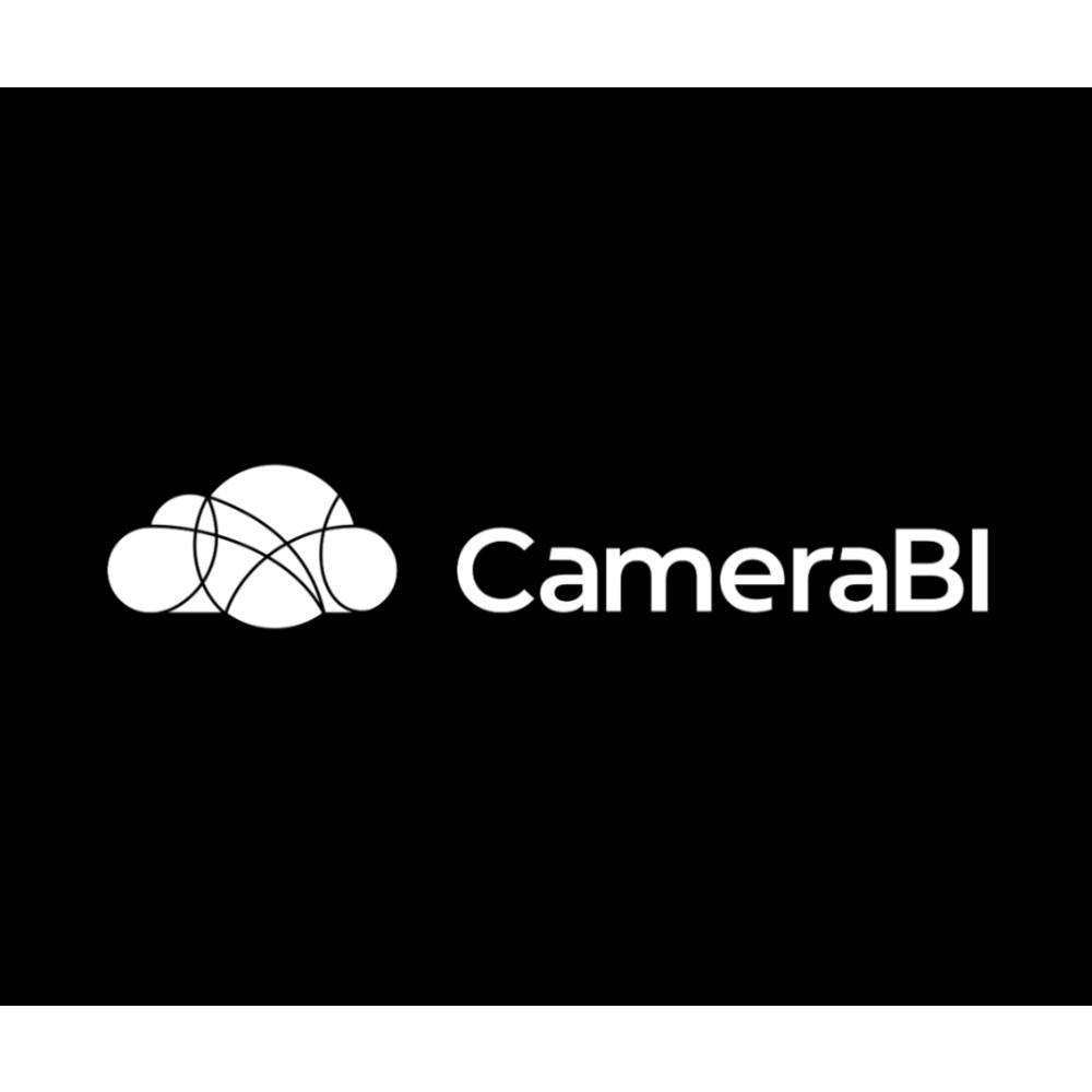 camerabisqaure